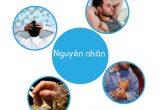 7 Nguyên nhân rối loạn cương dương thường gặp nhất