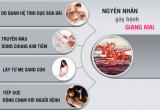 Nguyên nhân gây bệnh giang mai là gì? –  Những chú ý khi mắc bệnh