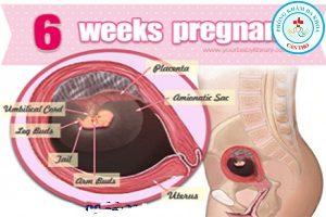 Hút, phá thai 6 tuần tuổi có đau không, nguy hiểm không